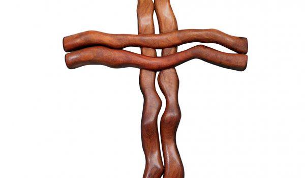 Organic Cross 3